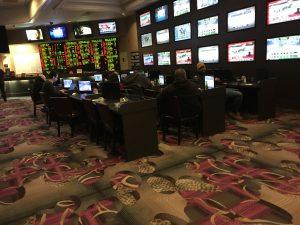 Flamingo sports betting sports betting web templates