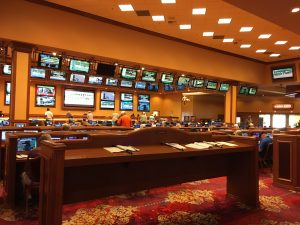 south point casino sports betting